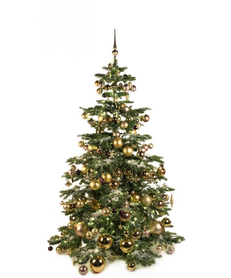 Luxury Tree Golden Mocca 210cm-0